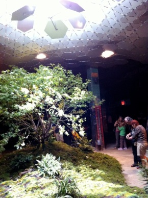 Public space, access, and the Lowline