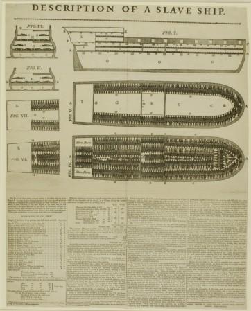 Brookes slave ship diagram